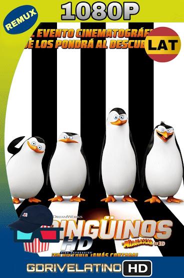 Los Pingüinos de Madagascar (2014) BDRmux 1080p Latino-Ingles MKV