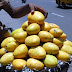 Banaganapalle Mangoes Get Geographical Indication Tag