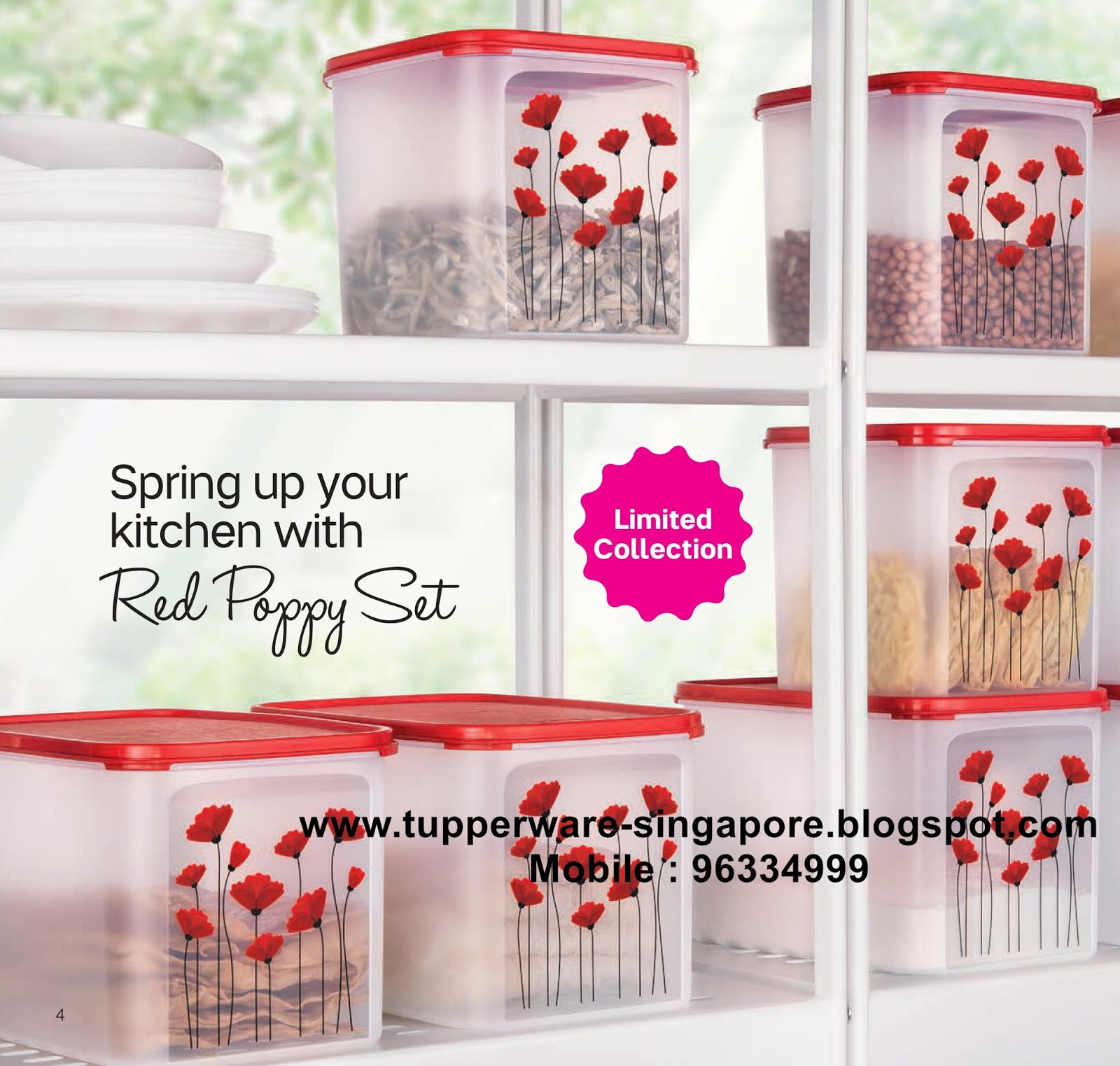 Buy Tupperware in Singapore: Catalogue valid from 16 February to 31 ...