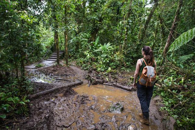 Caminos llenos de barro en parque nacional Volcán Tenorio, Costa Rica