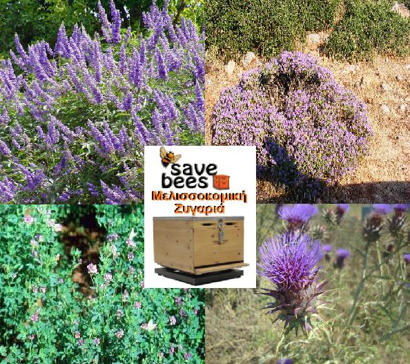 Τι λέει η ζυγαριά Save bees στις καλοκαιρινές νομές