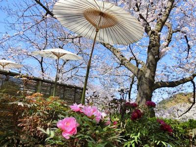 神苑ぼたん庭園