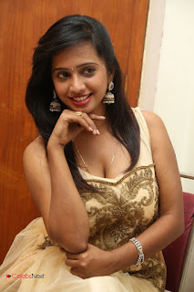 Actress Nakshatra Latest Picture Gallery in Long Dress  0109.JPG