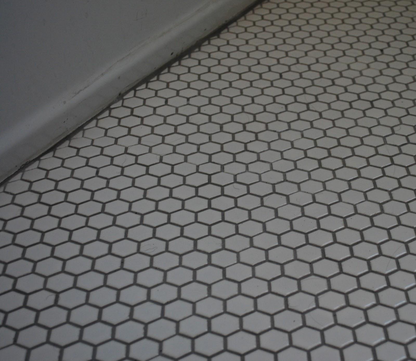 Vinyl Flooring Hexagon Pattern
