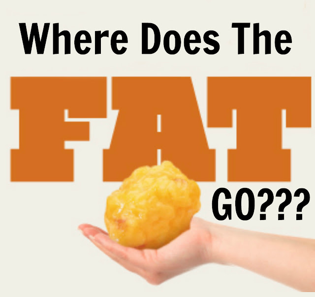 Where does the fat go with coolsculpting By Slim Silhouettes and Barbies Beauty Bits