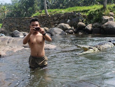 Manipulasi Foto Buaya di Sungai