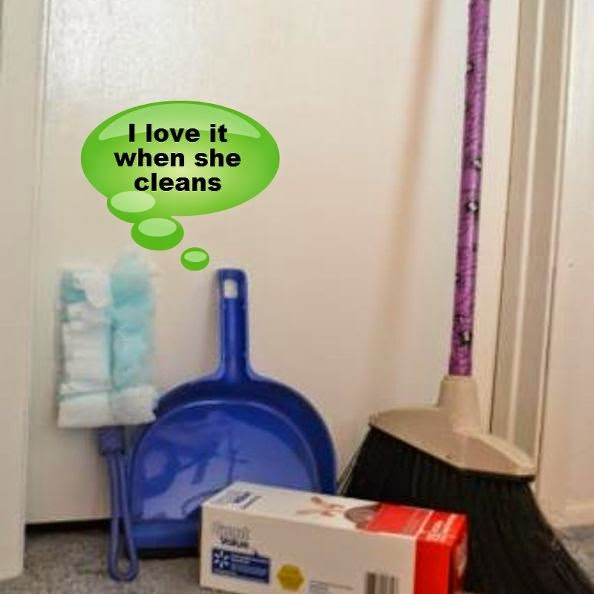 http://www.forwhatitsworthjeannie.com/2017/01/how-to-clean-your-house-with-chart.html