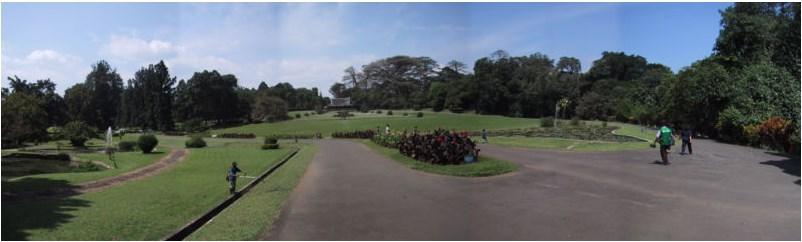 7 Tempat Wisata Di Bogor Yang Murah Meriah Kidung Kinanthi