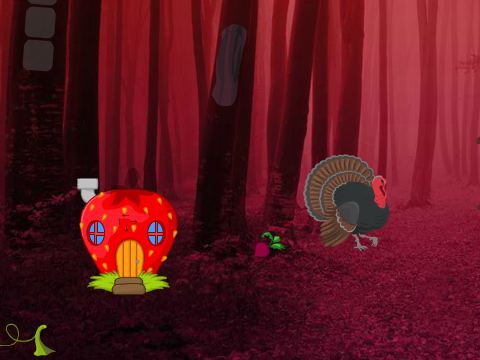 Games2Rule Wild Turkey Fairyland Escape