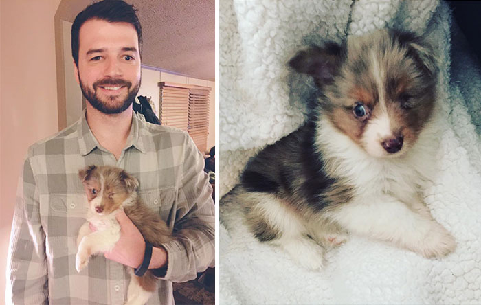 40 Times 2016 Restored Our Faith In Humanity - This Guy Only Has Vision In One Eye, So He Bought A One-Eyed-Dog That No One Else Wanted