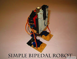 Simple Bipedal Robot