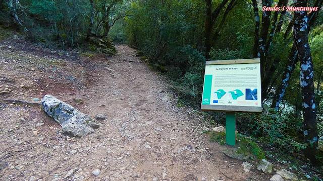Sendero cerrada Elías, río Borosa, Pontones, Sierra de Cazorla, Jaén, Andalucía
