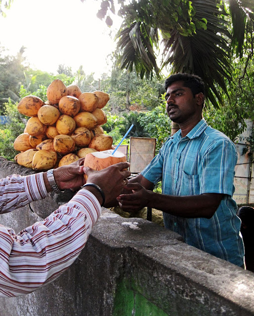giving the customer his coconut