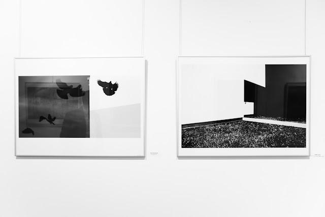 Wernisaż pokonkursowej wystawy XVII Międzynarodowego Biennale Krajobrazu w Kielcach. Definicja przestrzeni. BWA. ZPAF.