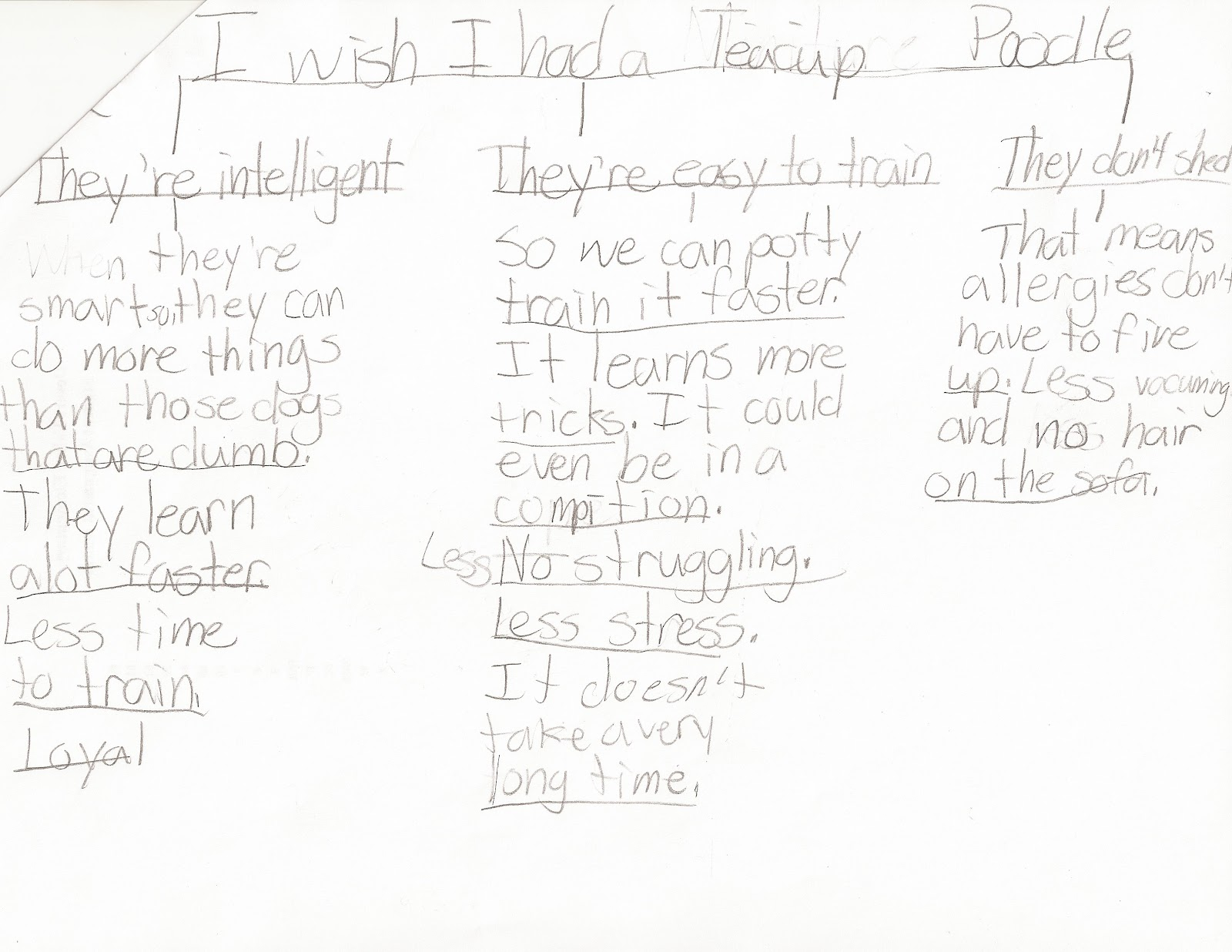 6th grade persuasive essay template