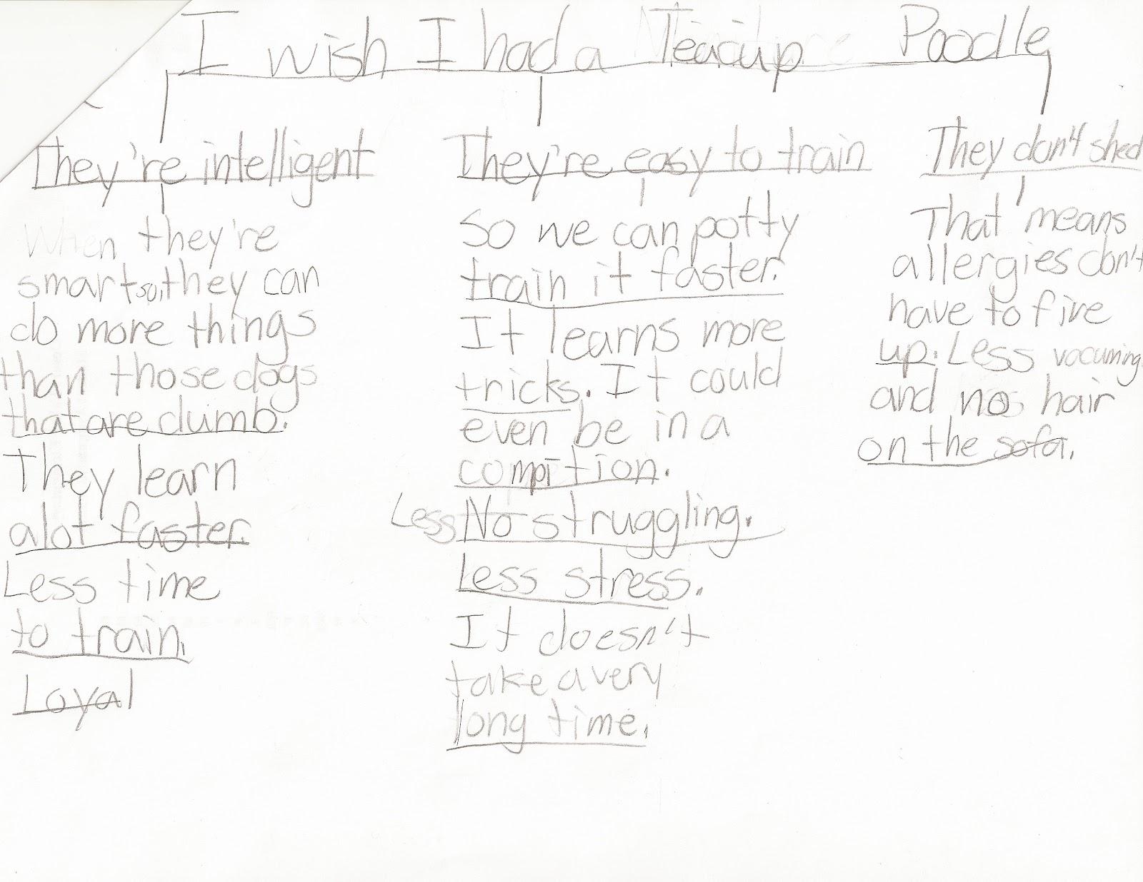 6th Grade Persuasive Essay Template Online Writing Lab Apotheeksibilo