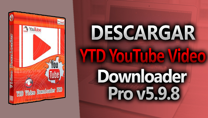 descargar video downloader professional