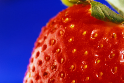 photo d'une fraise (fruit)