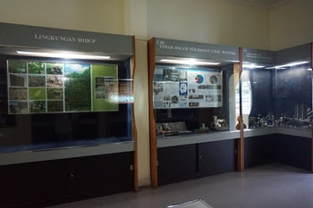Museum Timah Indonesia
