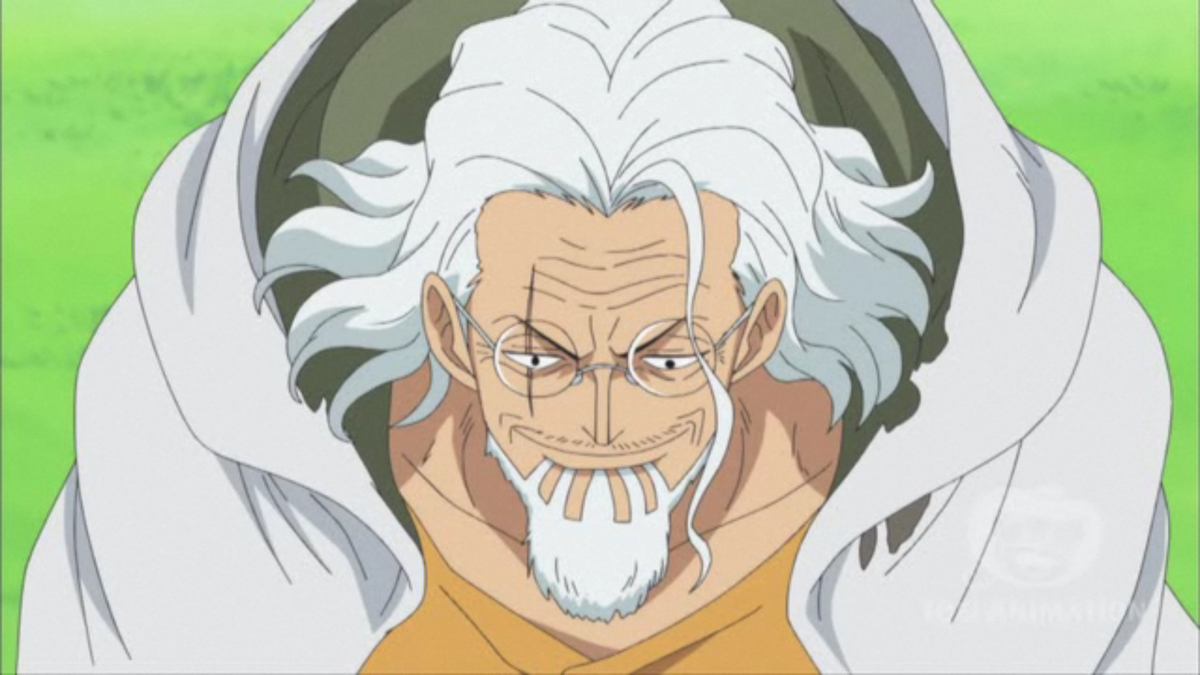 one piece silvers rayleigh