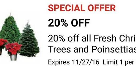 Heb coupons christmas