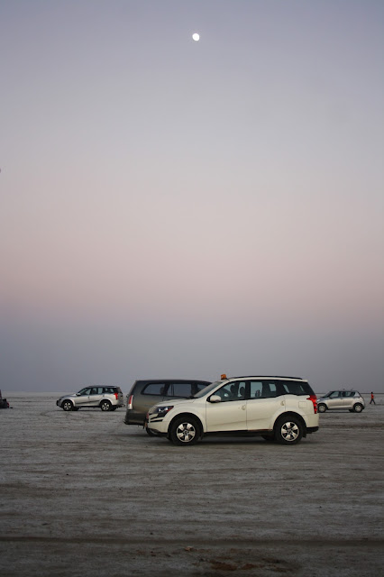 Rann of Kutch, White Desert, Gujarat, white, beautiful, salt marsh, twilight