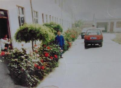 陕西省渭南市冤民刘一宁:控诉渭南贪官与恶痞势力勾结对我们的抢掠