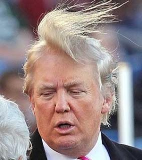 Le musa mancanti : L'arte della politica > - Pagina 25 Trump