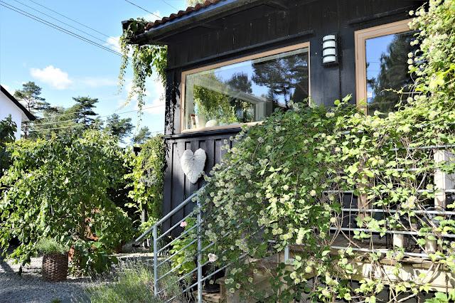 Se en hage i harmoni med seg selv - Kjøkkeninngangen. Furulunden.