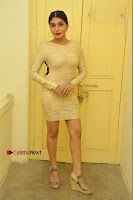 Actress Pooja Roshan Stills in Golden Short Dress at Box Movie Audio Launch  0005.JPG