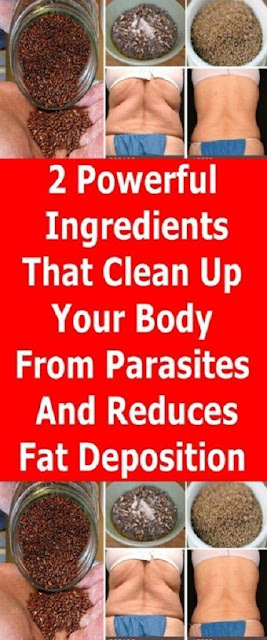 2 POWERFUL INGREDIENTS THAT CLEAN UP YOUR BODY FROM PARASITES AND REDUCES FAT DEPOSITION