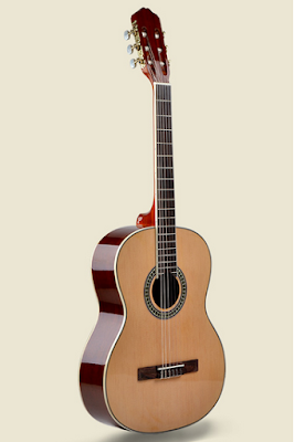 Đàn guitar classic Vines VA-350N