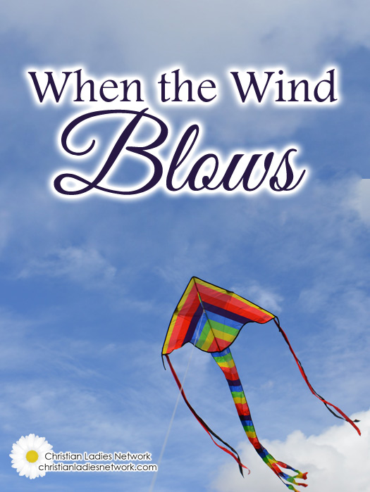 We Don't Have to Fear With the Winds of Life Begin to Blow #faith #encouragement