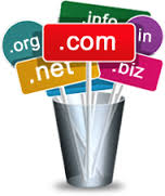 One Year Free Domain Name