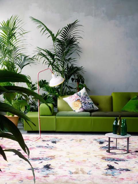 décoration thème jungle exochic salon
