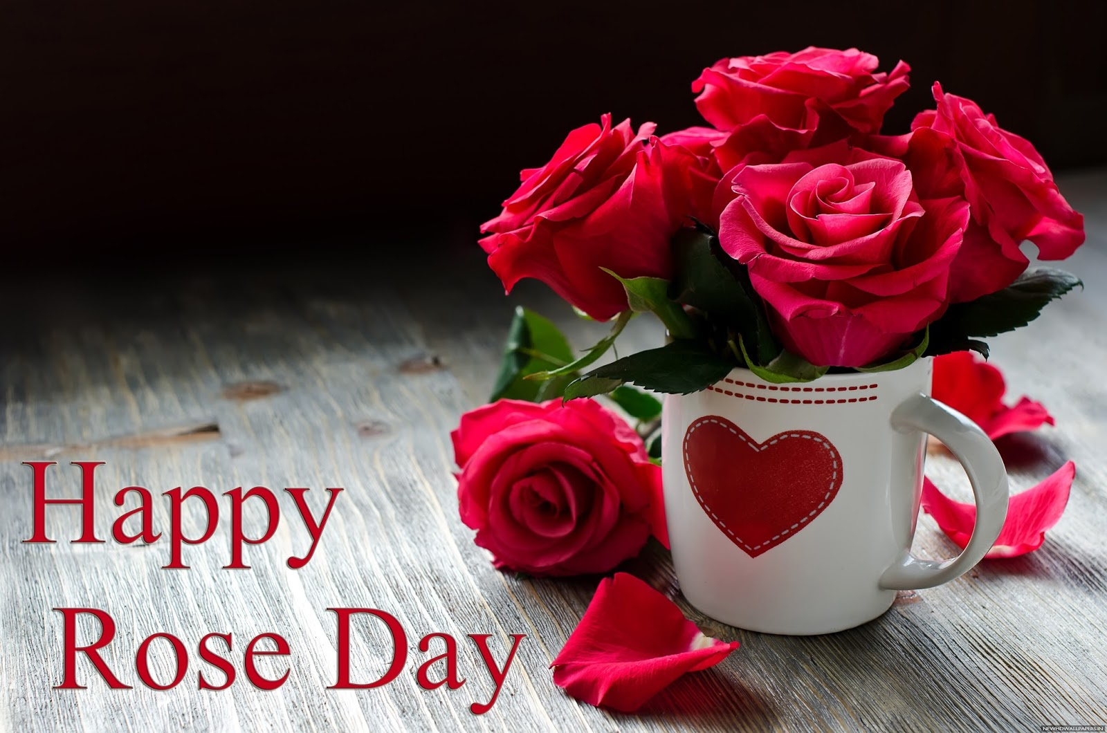 first day of valentine rose day messages quotes wishes 2017