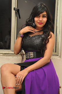 Telugu Actress Rachana Smith Stills at Money is Honey Audio Release  0032.jpg