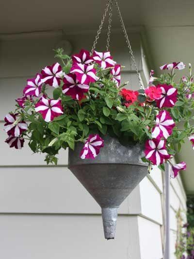 Corong bisa jadi pot bunga gantung yang sempurna