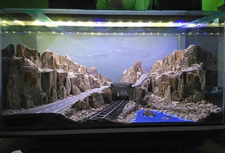 Con đường núi đá hùng vĩ được mô phỏng trong bể thủy sinh