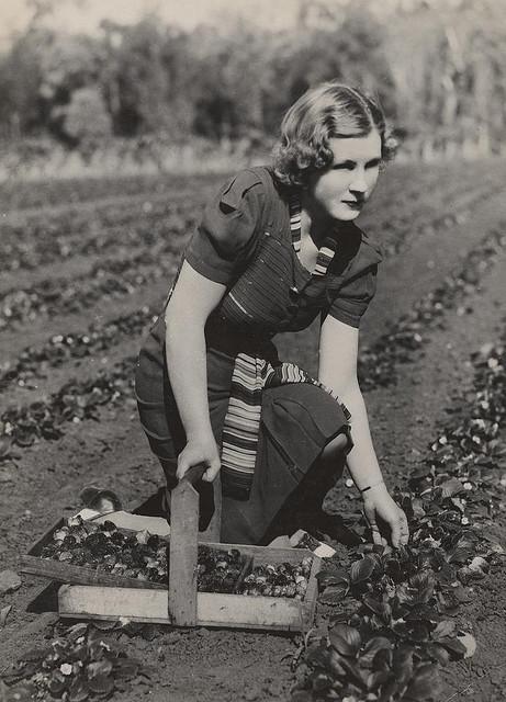 women farming vintage everyday
