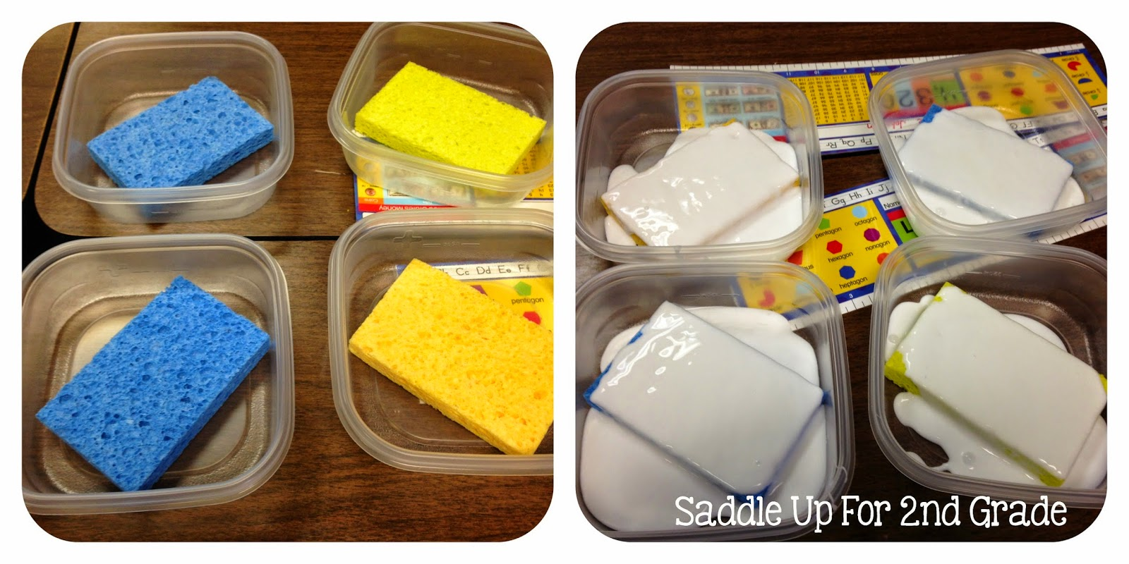 Glue Sponges by Saddle Up For 2nd Grade
