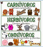 Resultado de imagen de clasificacion de los animales para niños