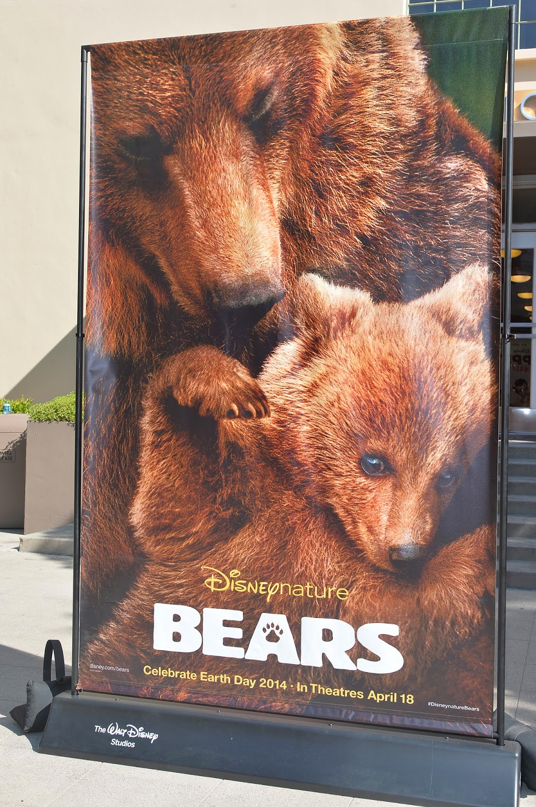 #Disneynature BEARS is Coming April 18th