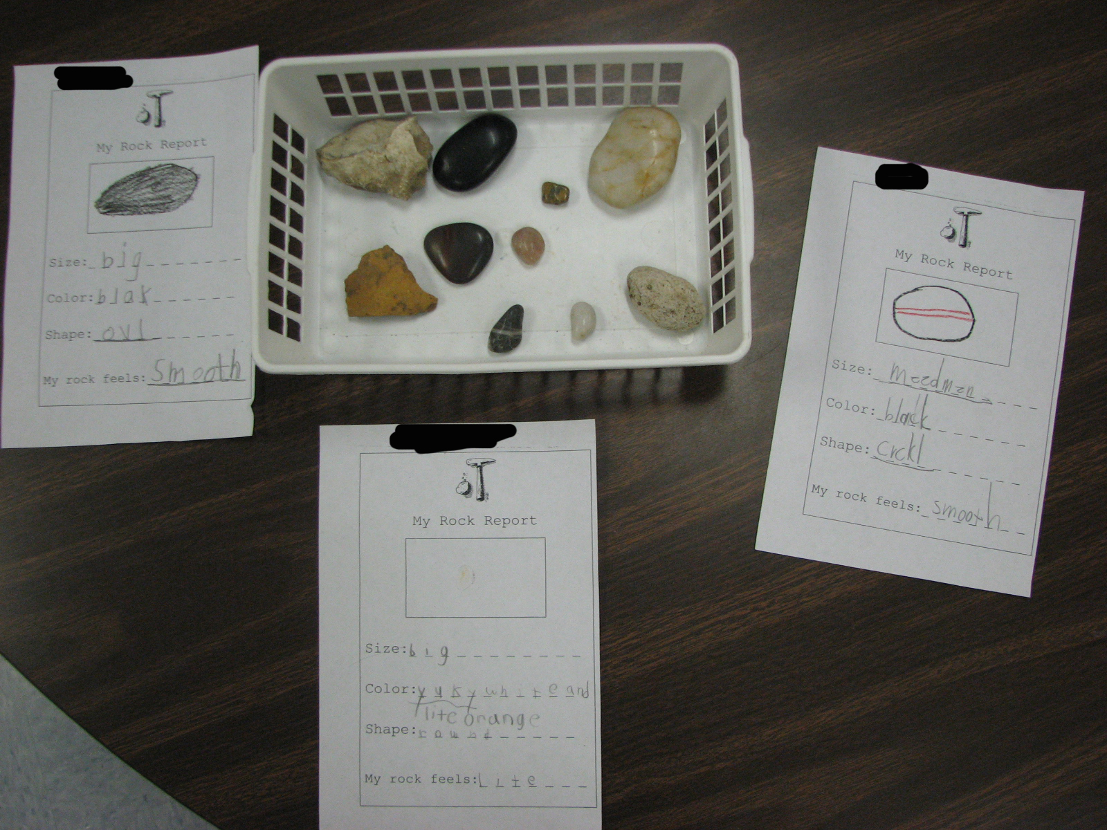 First Grade Randomness Rocks And Soil Exploration