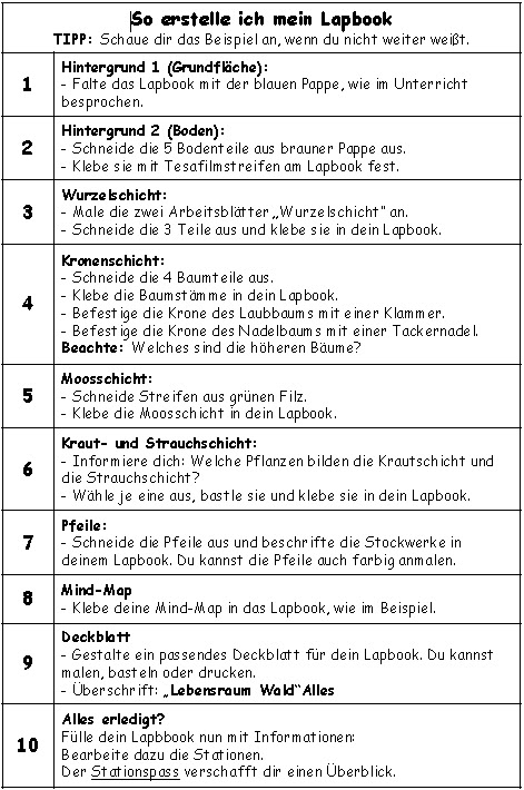 teach amp share grundschule lapbook quotlebensraum wald