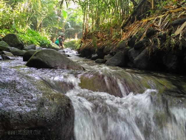Susur Sungai Kali Adem Desa Wisata Pancoh Sleman DIY