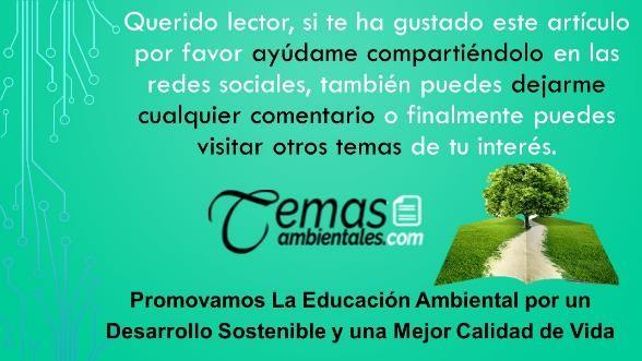 educacion ambiental y caracteristicas del Medio Ambiente