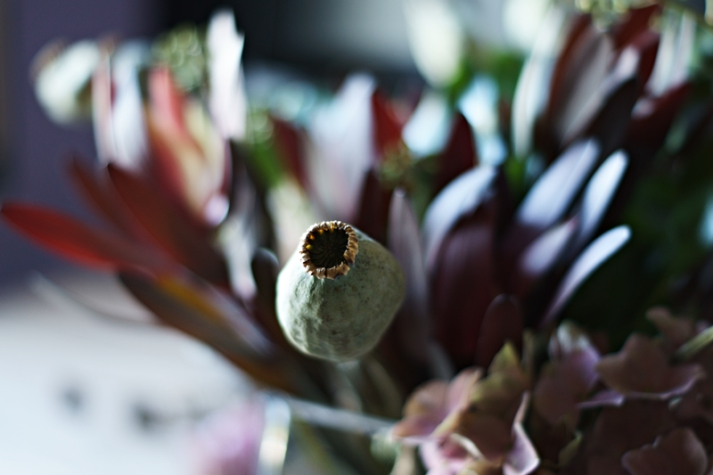 Blog + Fotografie by it's me! - Herbstblumenstrauss mit Mohnkapseln