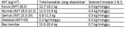 Bayi Berat Badan Lahir Rendah (BBLR)