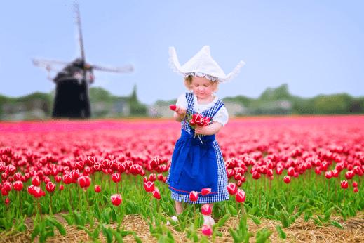 قائمة المهن المطلوبة في هولندا 2018
